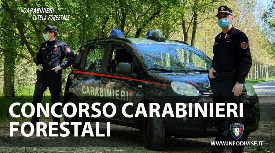 Carabinieri: concorso per 11 Tenenti in servizio permanente nel ruolo Forestale