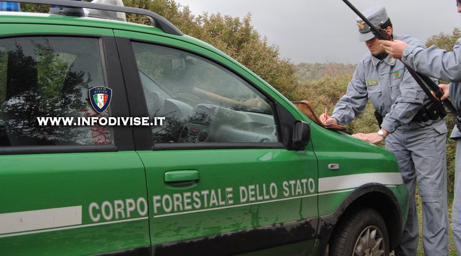 Assorbimento Corpo Forestale ai Carabinieri, CEDU riconosce violazione e concede risarcimento economico